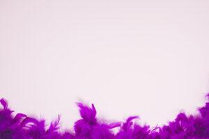 plumas-suaves-fondo-rosa-claro-espacio-escribir-texto_23-2148051899